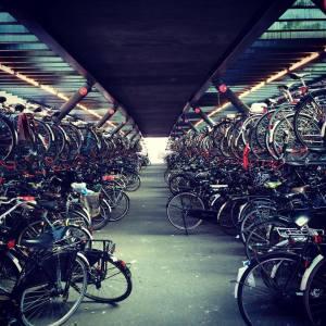 Now.. where did I put my bike?
